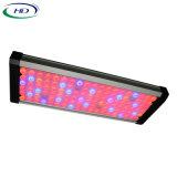 Orpheus-Serien 208W LED wachsen für Pflanzendas wachsen hell