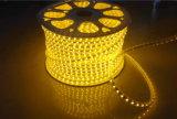 Indicatore luminoso esterno della corda di Hvsmd5050 LED con 2 anni di garanzia