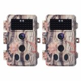 IP66 étanche 1080P Trail Caméra de chasse avec 120 Angle de détection et la vision nocturne jusqu'à 65ft