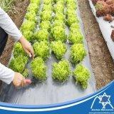 Non-tissé Spunbond tissus non tissés d'interligne de contrôle des mauvaises herbes