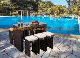 Sgabelli esterni della Tabella della barra del giardino del patio delle 7 parti che pranzano la mobilia esterna del rattan di vimini stabilito