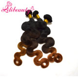 Vente en gros Body Wave Cheveux humains Ombre Colored Remy Hair Weft
