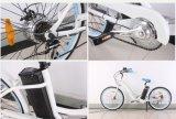 """26 """" 숙녀 Aluminum Engine Alloy Wheels 단속기, 전기 자전거 바닷가 함 (TDE01Z-1215)"""