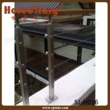 Ponceuse en acier inoxydable Main courante en escalier (SJ-H039)