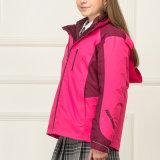 Куртки зимы конструкции верхней части оптовой продажи куртки типа школы молодые