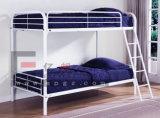 Fashional Entwurfs-Metallkoje-Bett für Kursteilnehmer-Schlafsaal
