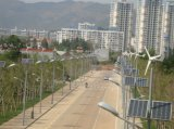 Horizontales Straßenlaternedes Mittellinien-Wind-Turbine-Sonnenkollektor-Mischling-60With100With120W LED