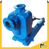 Elektrische zentrifugale horizontale Abwasser-Pumpe