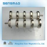 De permanente Magnetische Assemblage van de Haak van het Neodymium NdFeB