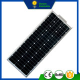100W todo en una calle Solarlight del panel del LED