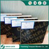 fabricantes impermeáveis Phenolic da madeira compensada do folheado de 8mm-21mm