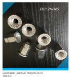 Les écrous à bride hexagonal personnalisé en acier inoxydable avec rippe