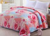 Épaississement simple, double, grande couverture estampée de polyester de couverture de flanelle (SR-B170316-13)