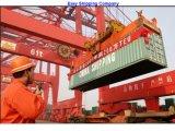 عزّزت شحن من الصين إلى [أوسا]