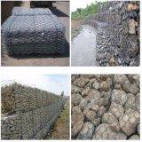 8G/M2 à 300g/m2 Galvanzied ou grillage hexagonal revêtus de PVC