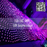 Video LED-gordijn in de uitverkoop