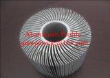 Profiel van het Aluminium van het Profiel van de Uitdrijving van 10 Aluminium van China het Hoogste voor de Glijdende Deur van het Venster