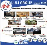 La película barata de la base de la junta del dedo hizo frente a la ciudad de Plwyood Linyi