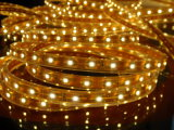 CE EMC LVD RoHS Two Years Warranty, LED Flexible SMD3528/5050 Yellow Strip Light con CE&RoHS