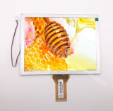 8 Scherm van de Vertoning van de duim TFT LCD 800X600 RGB 50pin 600CD/M2 TFT LCD
