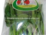 Micro- Zelfklevende Geperforeerde Bag/Food Geperforeerde Zak