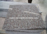 Prices poco costoso G664 Granite Tiles/Slabs per Flooring