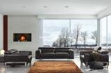 يعيش غرفة [جنوين لثر] أريكة ([سبو-3946])