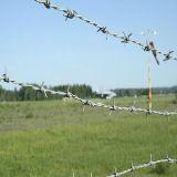 耐久の有刺鉄線を囲う機密保護