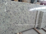 Weiße Rose Granite Stone Countertop für Kitchen, Bathroom