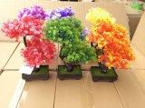 Piante e fiori di plastica artificiali di piccole piante Gu201701 dei bonsai