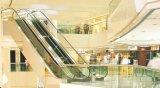 Le déplacement Escalator pour le shopping, super marché marché