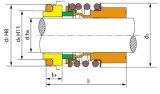 A vedação mecânica, Vedação da Bomba, Burgmann mg13, Aesseal B013, Umbra FG3