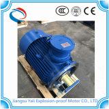 Motore elettrico a tre fasi Ybx3 di IP55