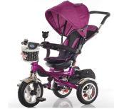 Baby-Spaziergänger, Baby-Dreirad 4 in 1 Dreirad
