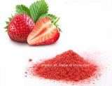 Fabrik-Zubehör-organisches gefriertrocknetes Erdbeere-Frucht-Masse-Saft-Puder