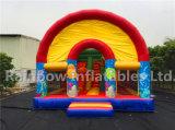 Mer gonflable Funcity/cour de jeu gonflable de Custmoized avec la couverture/jeux gonflables