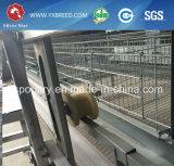 La volaille chinoise de rangées des machines 4 de ferme de fournisseurs posent la cage