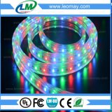IP68 indicatore luminoso di striscia ad alta tensione della piscina 3528/60LEDs/m RGB LED