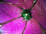 Bâton léger solaire de yard de décoration de jardin de fleur en métal