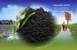 Pó do ácido Humic no fertilizante orgânico