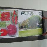 Panneaux d'impression à jet d'encre graphiques à feuilles réceptives imprimées personnalisées imprimées personnalisées