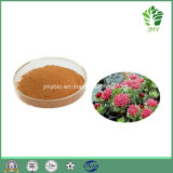 Organisch Uittreksel van uitstekende kwaliteit 1.2%~5% van de Wortel van Rhodiola Rosea Salidrosides