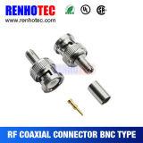 Type BNC à sertir de connecteur mâle et femelle pour câble RG59