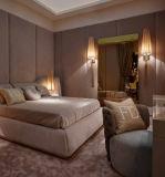 Indicatore luminoso della parete personalizzato stanza di progetto dell'hotel (KA170301-3)