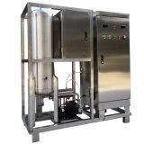 Ozon-Generator für Gemüsepestizidrückstand-Abbau
