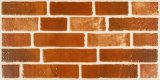 أعلى جودة من بلاط البورسلين ستريت لبناء البلاط (36303)