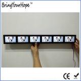 6 écrans en 1 Bande Adavertising numérique Player (XH--0436 DPF)