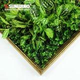 [نو جنرأيشن] نمو [ديي] تصميم فنّ [3د] جدار خضراء لأنّ زخرفة