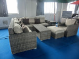 رفاهية مستديرة [ويكر] أريكة مع تخزين [كفّ تبل] مجموعة