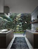 Backsplashのレストランの台所家具が付いている経済的な食器棚